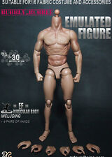 1/6 Muscular Nude Figure Body TTM19 Fit Wolverine Head ZC Toys SHIP FROM USA