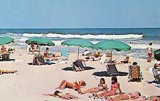 """HOLLYWOOD FLORIDA AREA """"BEAUTIES ON THE BEACH"""" UNUSED POSTCARD"""