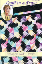 Quilt Pattern  ~ PINEAPPLE QUILT  ~ by Eleanor Burns - Quilt in a Day
