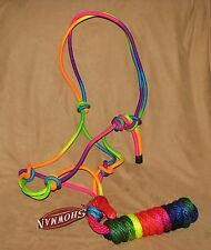 Showman Adjustable RAINBOW Colored Cowboy Horse Halter with Matching 8' Lead