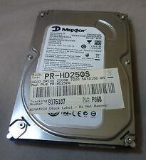 """Maxtor 250GB STM3250318AS 9SS131-327 F/W:CC38 3.5"""" SATA DISCO DURO/HDD"""