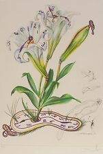 "SALVADOR DALI ""Lilies of time"" HAND SIGNED COA Surrealistic Flowers Etching"
