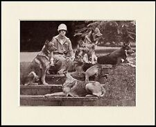 GERMAN SHEPHERD LADY AND DOGS LOVELY DOG PRINT MOUNTED READY TO FRAME