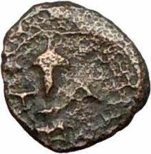 Temnos in Aiolis  350BC Ancient Greek Coin Dionysos Wine God Grapes  i28121