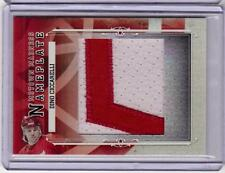 DINO CICCARELLI 12/13 ITG Motown Madness Nameplate SP Patch #1/1 Name Plate 'L'