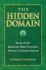The Hidden Domain : Home of the Quantum Wave Function (2011, Paperback)