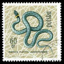 Scott # 1137 - 1963 - ' Grass Snake ', Reptiles & Amphibians in Natural Colors