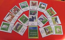 SPANISH & ENGLISH FARM ANIMALS-16 FLASH CARDS -  EARLY YEARS -TEACHING RESOURCE