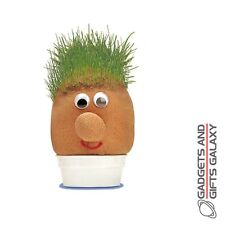 MR GRASSHEAD inc GRASS SEED TRIM & STYLE IT! discovery summer garden toy gift