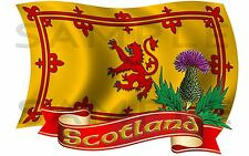 Med Scotland Rampant Lion Thistle Flag sticker Truck van car motorhome Caravan