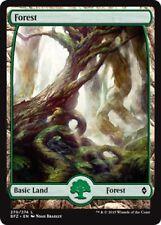 4 x Forest (270/274) - Battle for Zendikar - Full Art Magic the Gathering (MTG)