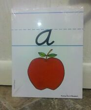 NEW Lower Case Alphabet Wipe Off Tracing Cards D'Nealian writing educational