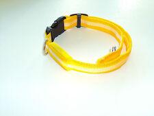 Leuchthalsband/Hundehalsband in gelb Gr. M