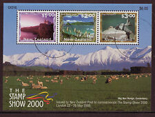NEW ZEALAND 2000 STAMP SHOW MINIATURE SHEET FINE USED