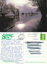 1993 THE SOMERSET LEVELS IN FLOOD SOMERSET COLOUR POSTCARD