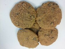 Two Dozen Soft Handmade Oatmeal and Raisin Cookies