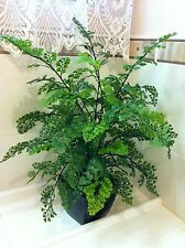 50cm tall SOFT TOUCH ARTIFICIAL MAIDEN HAIR PLANT * POTTED IN BLACK POT* NEW*