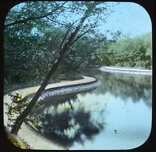 Dutch Colour Glass Magic Lantern Slide Photo Rotterdam Park Netherlands