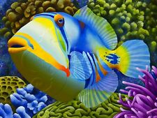 CAROLYN STEELE TROPICAL WILDLIFE GICLEE PRINT PICASSO TRIGGERFISH: PABLO