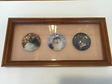 "3 Royal Worcester Miniature Cat Plates with Wooden Frame, 3 3/4"" D (Plates)"