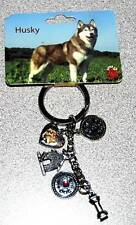 Little Gifts Husky Puppy Dog Handbag Charms Bones Blings Key Chain