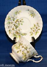 Mint Royal Albert English China Montrose Teacup & Saucer Duo ☆ PACIFIC DOGWOOD