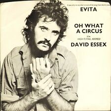 """DAVID ESSEX oh what a circus/high flying adored 6007 185 uk mercury 7"""" PS EX/VG+"""