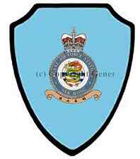 RAF SEK KONG WALL SHIELD