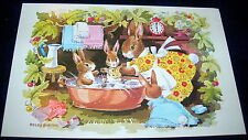 Medici Society - Bath Time Dressed Rabbits Postcard by Peggy Burton