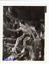 Buster Crabbe barechested VINTAGE Photo King Of The Jungle