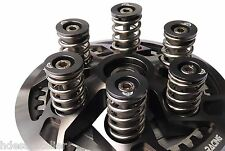 Ducati Clutch SPRINGS - BOLTS - CAPS 748 749 916 996 998 999 Monster 900