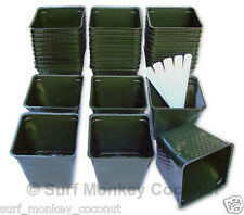 Plastic flower nursery plant pots lot of 36 containers!