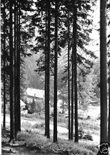 AK, Schmiedeberg OT Pöbeltal, Ferienheim Walsmühle der SDAG Wismut, 1975
