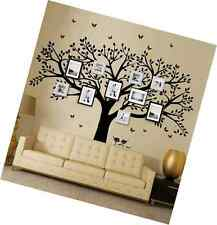 Family Tree Wall Decals Butterflies and Birds  Photo Frame Tree Stickers