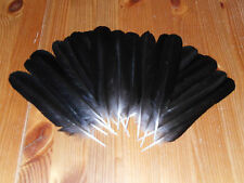 20 CROW TAILS FEATHERS, FLY TYING,ART&CRAFT,TRIBAL ARTS,JEWELLERY.DREAMCATCHER