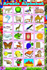 laminated  LEARN ARABIC ALPHABET LETTERS POSTER | educational language madrassah