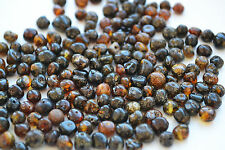 50 Pcs natural raw Baltic amber Rounded polished beads with holes drilled