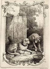 EAU FORTE / Fables de la Fontaine 1883 / LE LOUP ET LE CHIEN