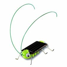 Solar Powered Grasshopper Educational Toy