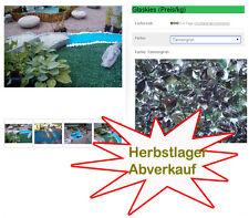 Glassplitt Glaskies Glassteine Tannengrün * Glas Gartenkies Deko Sonderposten