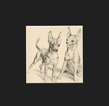 Vintage Chihuahua Puppy Dogs Print by Diana Thorne 1936 Matted 9x9