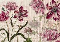 MERIAN Wallpaper Wall Mural FLOWERS NATIONAL GEOGRAPHIC  Made in Germany! HUGE!