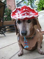 Rodeo Red Buckaroo Banzai miniature sombrero hat for dogs and cats