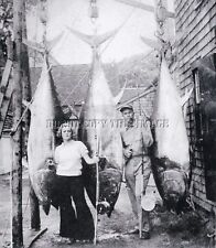 ANTIQUE FISHING REPRINTED 8X10 MAN WIFE PHOTOGRAPH WITH 3 GIANT TUNA FISH