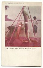 1906 Columbia River Sturgeon 850 pounds Portland Oregon Fishing  Postcard