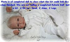 REBORN DOLL KIT, PHIL BY LINDE SCHERER, VINYL DOLL KIT