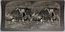 Keystone Stereoview of a Lapp Home and Family in NORWAY from the 1920's 400 Set