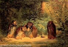 OWLS TALKING PAINTING BY WILLIAM BEARD ON CANVAS REPRO SMALL