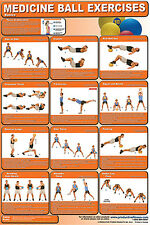 MEDICINE BALL EXERCISES Professional Fitness Gym Wall Chart POSTER