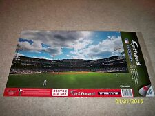 BRAND NEW! MLB BOSTON RED SOX FENWAY PARK PANORAMA VIEW WALL DECALS!